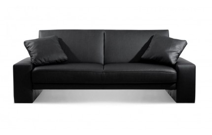 Supra Leather Sofa Bed