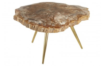 Newcity Coffee Table Petrified Wood Iron Brass Finish Legs